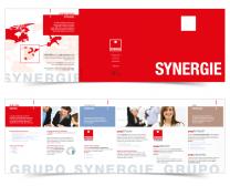 Triptico_synergie