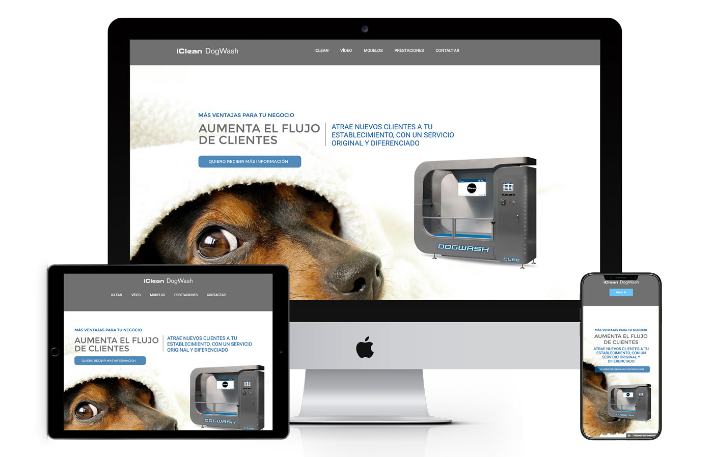 dogwash diseño web