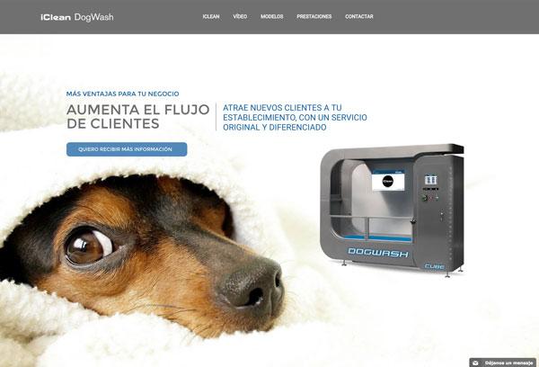 dogwash web miniatura