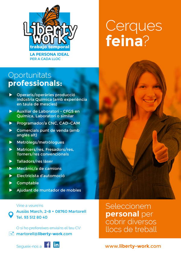 Diseño Flyer Liberty Work