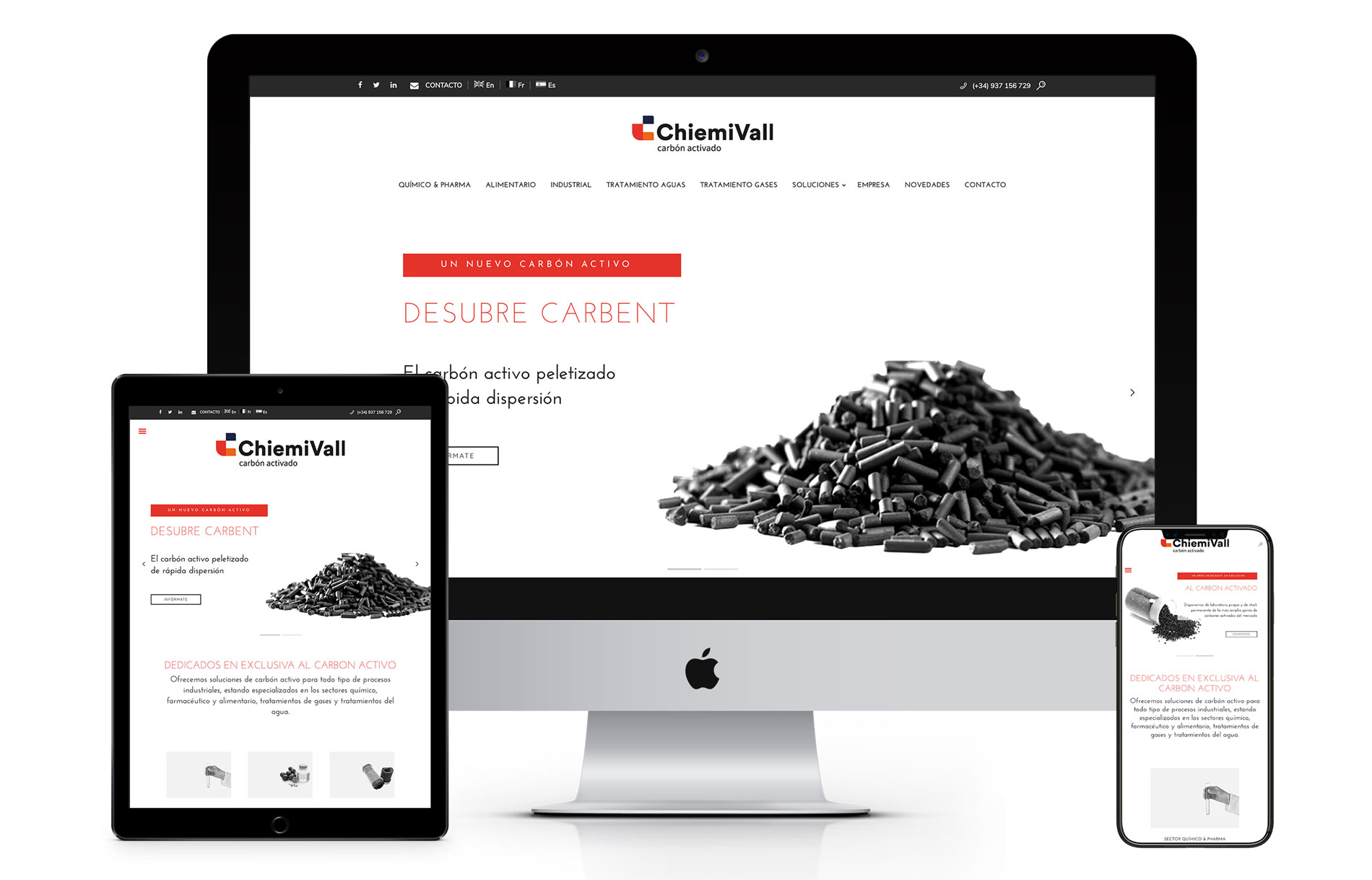 Web Chiemivall - Diseño web ChiemiVall